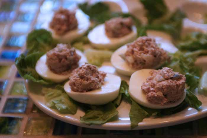 Tuna Salad5